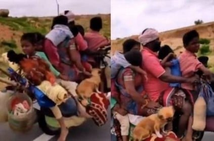 7 people and 2 dogs riding on a single bike video goes viral