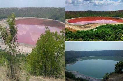 maharashtra lake changes to pink colour after high salt