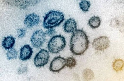 China\'s new outbreak shows signs the virus could be changing