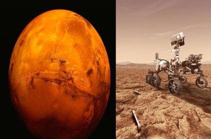 New York Times reported removal watermelon fruits on Mars